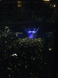 Ed Sheeran gig1